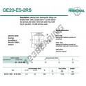 DGE20-ES-2RS-DURBAL